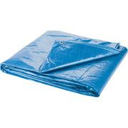 Kleton Polyethylene Tarp, Standard-Duty Blue, 30 x 40 Feet, 4 Mils Thick