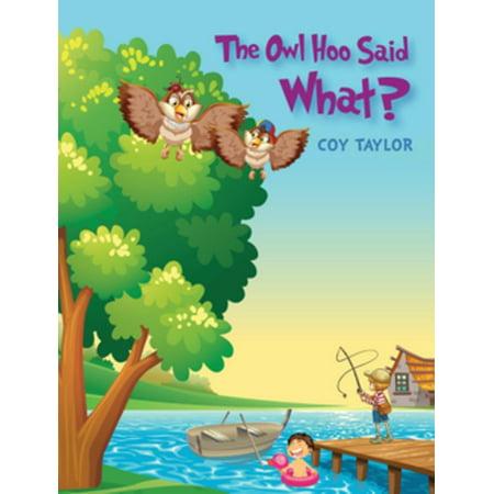 The Owl Hoo Said What? - eBook (Disney Hook)