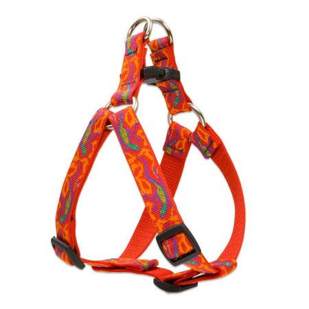 Lupine Inc 41044 34x15 21 Go Go Gecko Harness Walmartcom