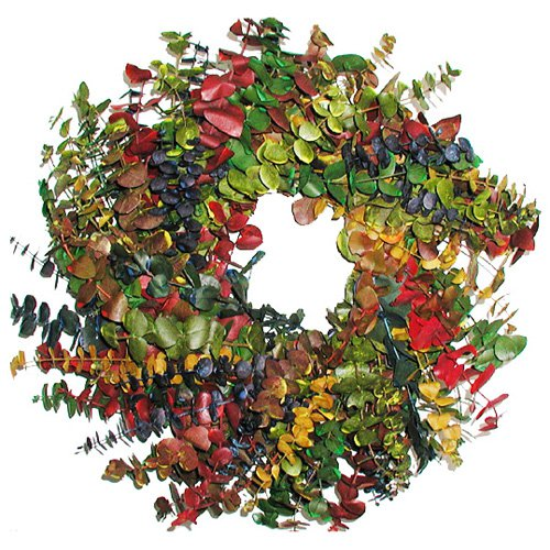 17 in. Calypso Wreath