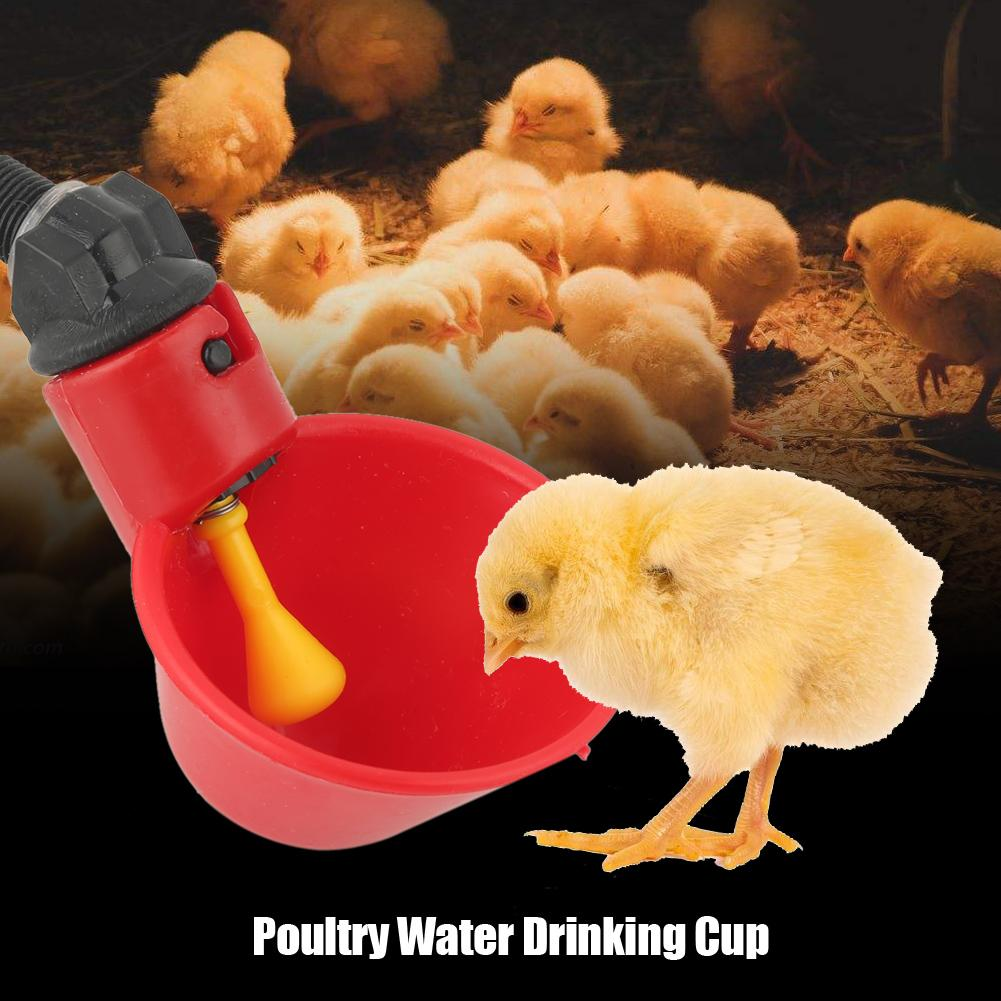 HURRISE10 PCS Automatic Poultry Water Drinking Cups Drinker Feeder for Livestock Chicken Hen, Poultry Drinker, Drinking Cup for hen