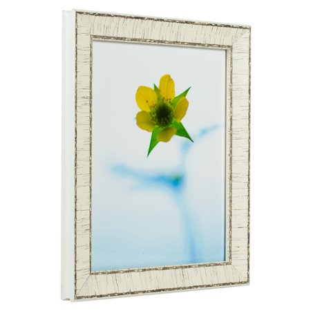 Craig Frames Marea Weathered Off White Birch Bark Picture Frame 12