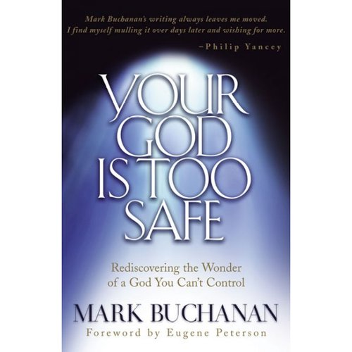 Your God Is Too Safe: Rediscovering the Wonder of a God You Can't Control