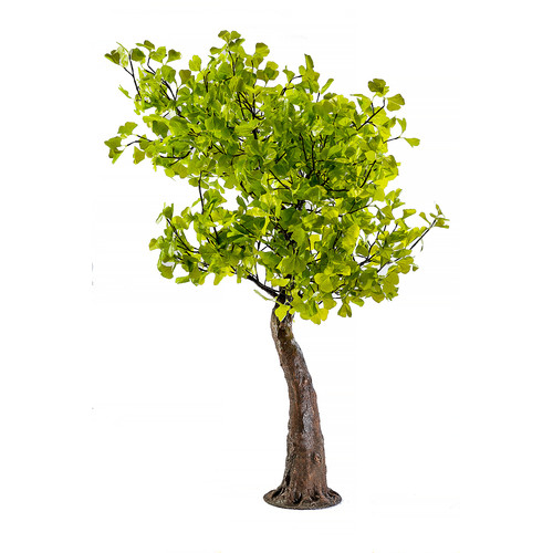 Arclite Inc Maple Tree