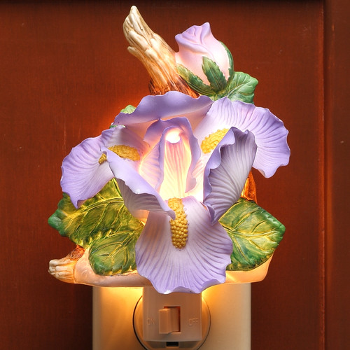 Cosmos Gifts Iris Night Light
