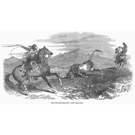 California Vaqueros 1849 Nvaqueros Catching Cattle Near