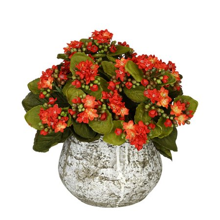 House of silk flowers inc artificial kalanchoe walmart house of silk flowers inc artificial kalanchoe mightylinksfo