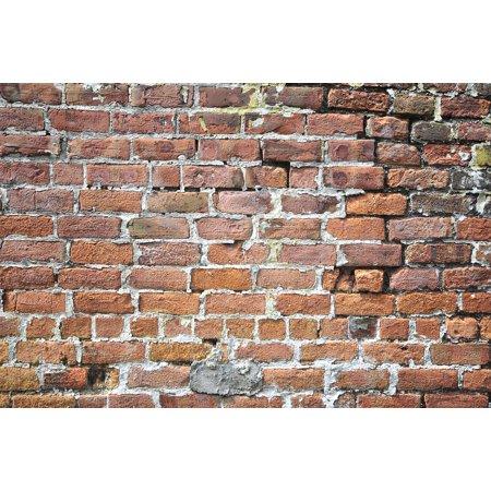 LAMINATED POSTER Block Aged Bricks Old Texture Dirty Wall Poster Print 24 x (Aged Brick)
