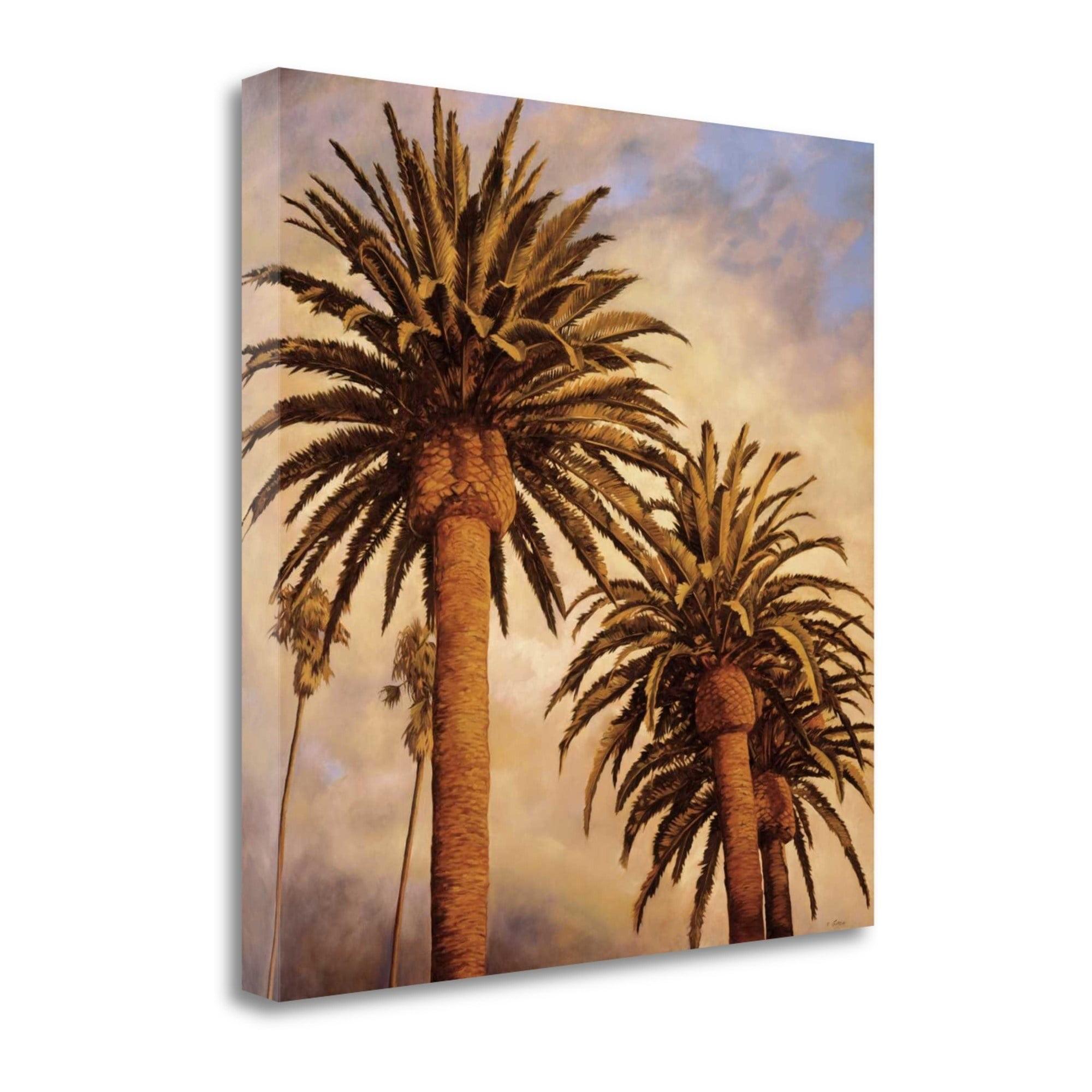 Fog Over Canary Palms By Rick Garcia Graphic Art On Wrapped Canvas Walmart Com Walmart Com