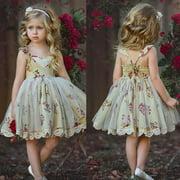 Elegant Baby Flower Girl Dress Princess Lace Tulle Tutu Backless Party Dress