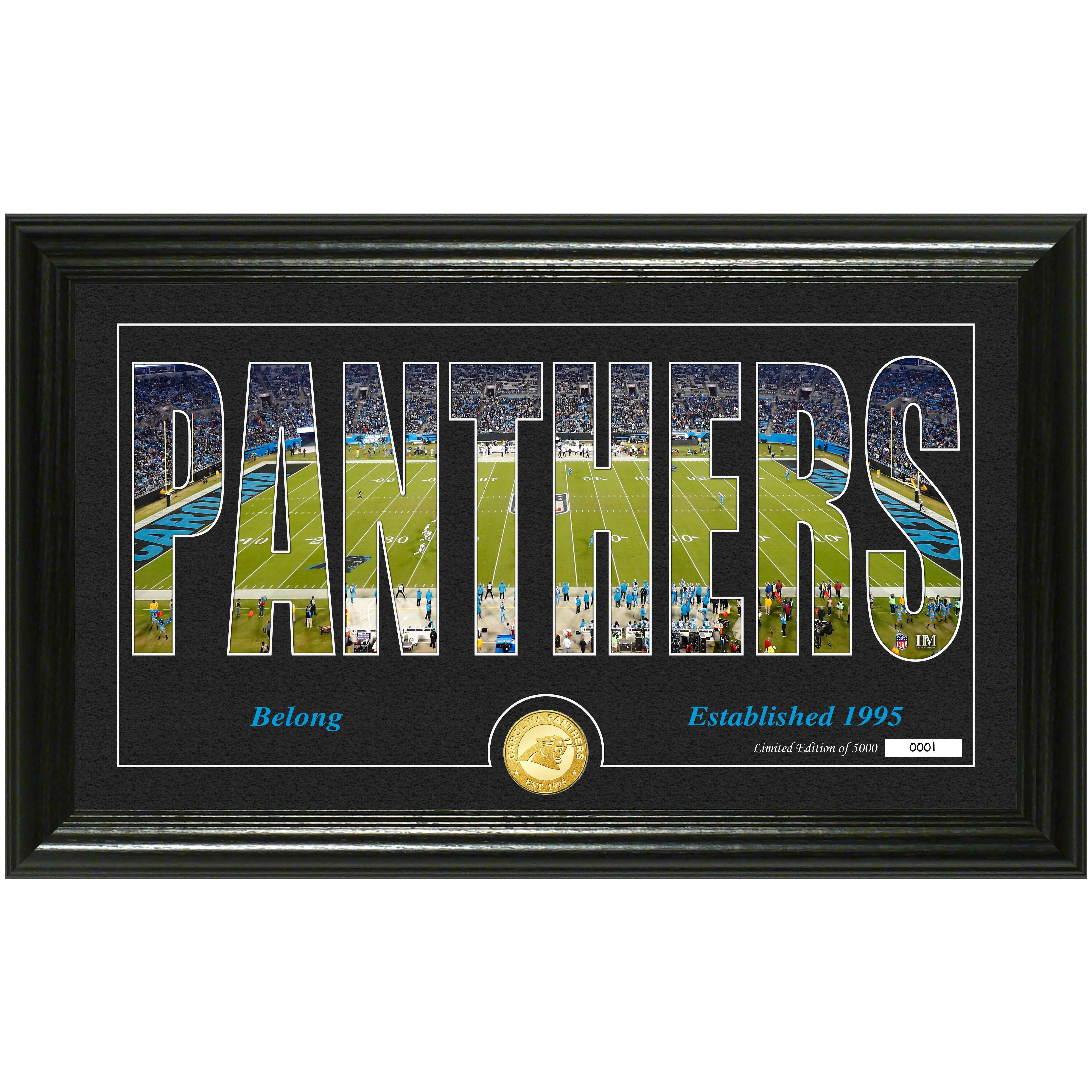 "Carolina Panthers Highland Mint 12"" x 20"" Silhouette Panoramic Photo Mint - No Size"
