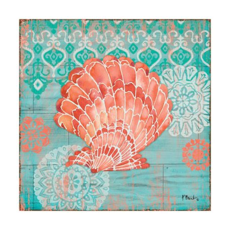 24 Coral Shell - Coral Cove Shells I Print By Paul Brent