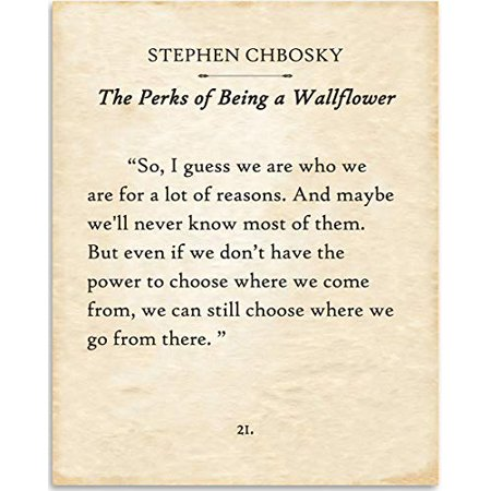 Stephen Chbosky - So I Guess We Are Who We Are - Perks of Being A Wallflower - Book Page Quote Art Print - 11x14 Unframed Typography Book Page Print - Great Gift for Book