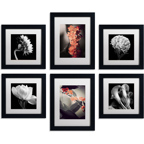 """Trademark Fine Art Floral Gallery Four 11"""" x 11"""" and Two 11"""" x 14"""" Canvas Art Wall Collection, Set of 6, Black Frame"""