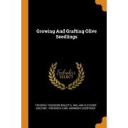 Growing and Grafting Olive Seedlings Paperback