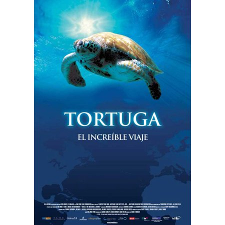 Turtle  The Incredible Journey  2009  11X17 Movie Poster  Spanish