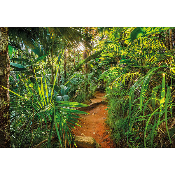 Jungle Trail Wall Mural