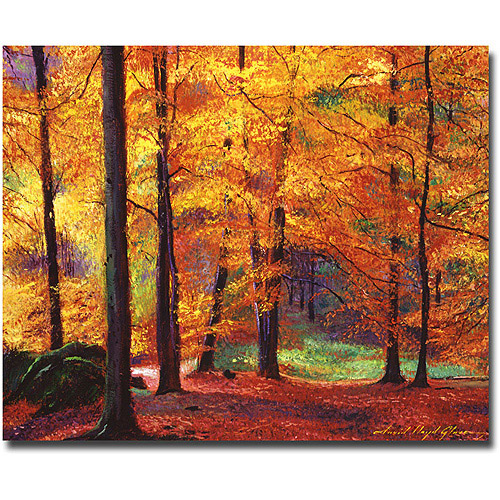 "Trademark Art ""Autumn Serenity"" Canvas Wall Art by David Lloyd Glover"
