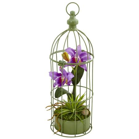 Nearly Natural Cattleya Orchid Silk Arrangement in Decorative Bird (Mini Cattleya Orchid)
