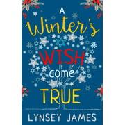 A Winter's Wish Come True - eBook
