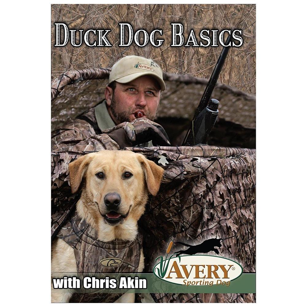 AVERY DVD - Duck Dog Basics (89995)