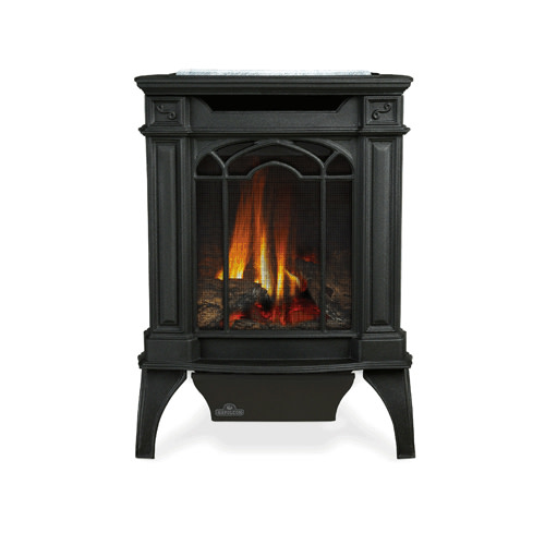 Napoleon GDS20SB 20000 BTU Free Standing Direct Vent Natural Gas Stove with Safe