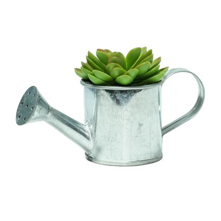 "4"" Green Mini Faux Echeveria Succulent in Tin Watering Can - image 1 of 1"