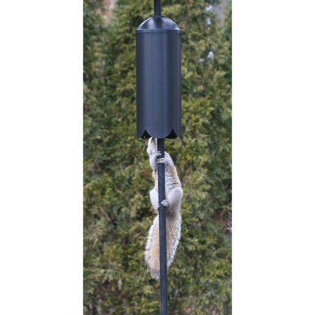 Mounted Squirrel (Erva Squirrel Baffle Cylinder Pole)
