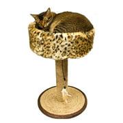 Ware Seagrass Wildcat Scratch N Sleep Scratching Post