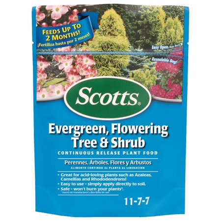 Scotts Evergreen Flowering Tree & Shrub Continuous Release Plant (Vigoro Tree Shrub And Evergreen Plant Food)