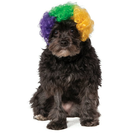 Clown Costume For Dogs (Mardi Gras Pet Tri Colored Dog Cat Afro Clown Costume)