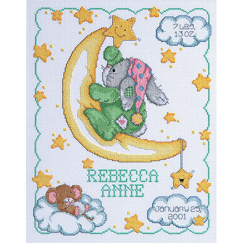 "Janlynn Crescent Moon Sampler Counted Cross Stitch Kit, 11"" x 14"", 14 Count"