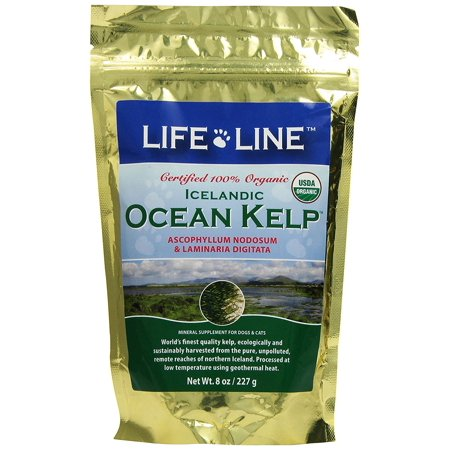 Organic Ocean Kelp Dog and Cat Supplement, 8-Ounce, Reduces build up of plaque and tartar for healthy teeth & gums By Life Line