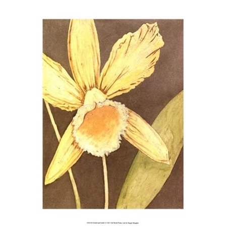 Posterazzi  Orchid & Earth I Poster by Megan Meagher -13.00 x 19.00 - image 1 of 1