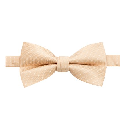 Spring Notion Men's Microfiber Dotted Bow Tie