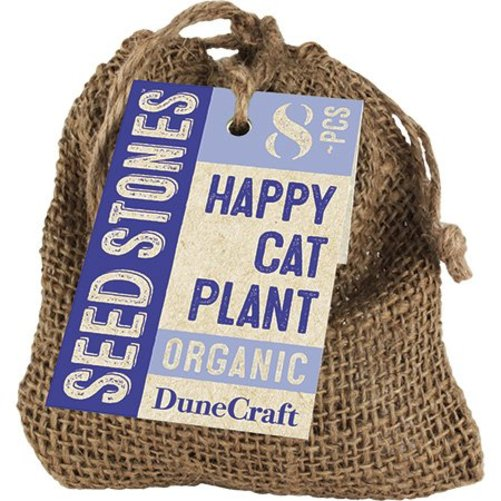 DUNECRAFT OB-0182 Happy Cat Plant