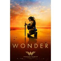 Wonder Woman Movie Poster (11 x 17)