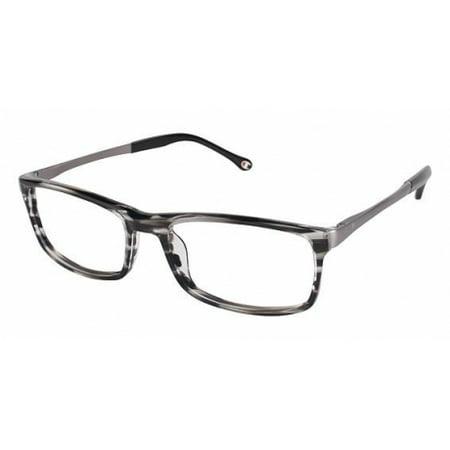 Champion Eyes 4004 Eyeglass Frames - Frame GREY TORT, Size 58/19mm ...