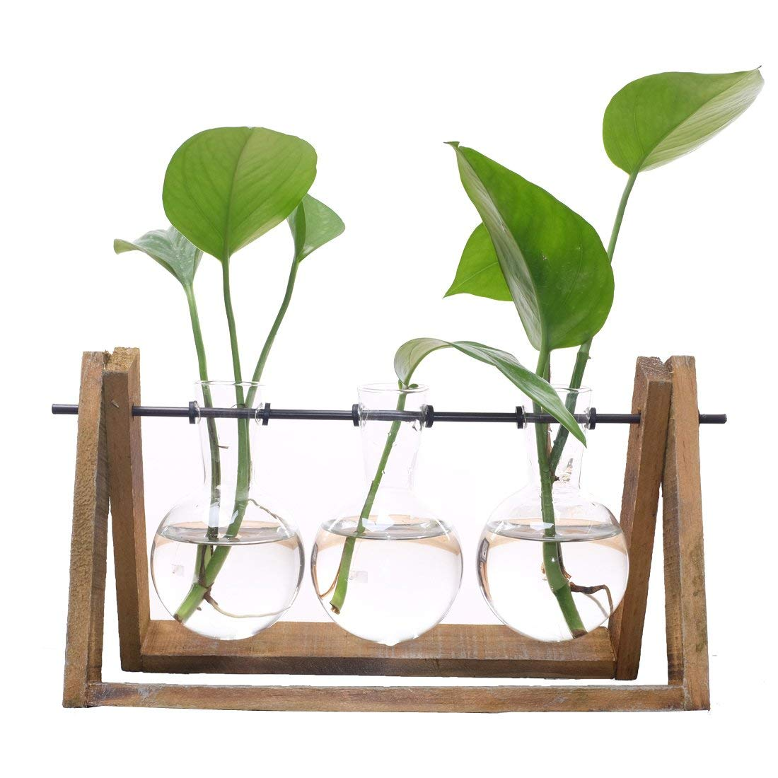 Meigar Plant Terrarium with Wooden Stand Glass Vase Holder for Home Decoration,Scindapsus Container (3 Terrariums)