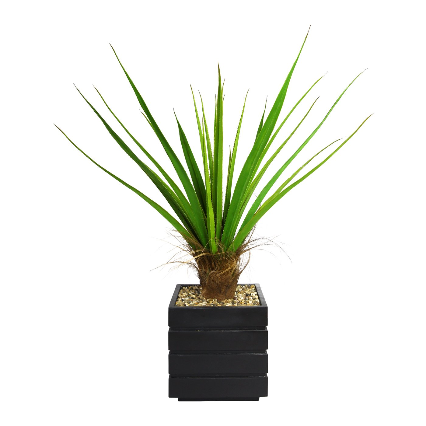 50-in Tall Agave Plant with Cocoa Skin in 14-in Fiberstone Planter
