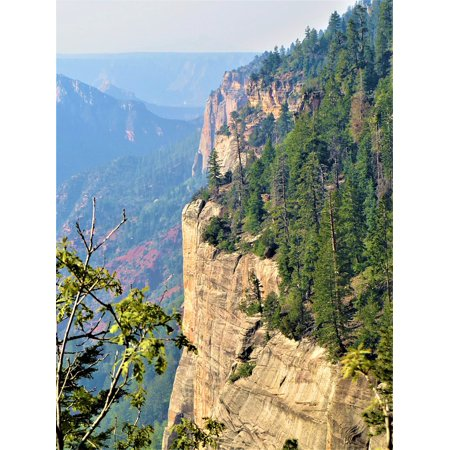 LAMINATED POSTER Green Scenic Hiking North Rim Grand Canyon Poster Print 24 x