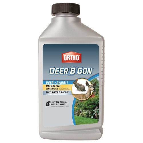 Ortho Deer B Gon Deer and Rabbit Repellent Concentrate, 32 oz