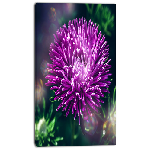 Design Art 'Chrysanthemum Flower with Bokeh' Photographic Print on Wrapped Canvas