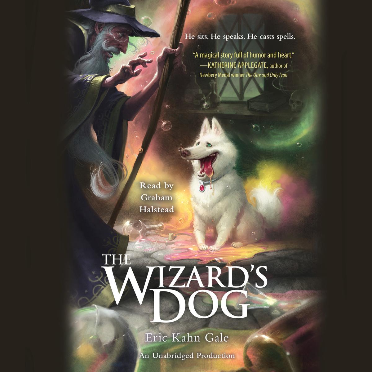 The Wizard's Dog - Audiobook