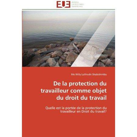 de La Protection Du Travailleur Comme Objet Du Droit Du Travail - image 1 de 1