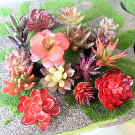 KABOER Mini Plants Artificial Succulents Variety Floral Fake Succulent Bouquet Decor 10 Pcs Random Color - Artificial Succulent