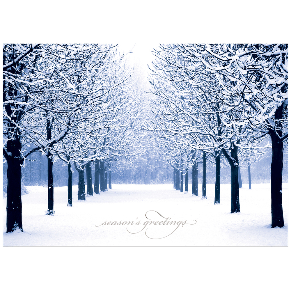 JAM Paper Blank Christmas Card Sets, Blue Tree Scene Christmas Cards, 25/pack