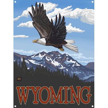 Wyoming Eagle Soaring Metal Art Print by Paul A. Lanquist (9