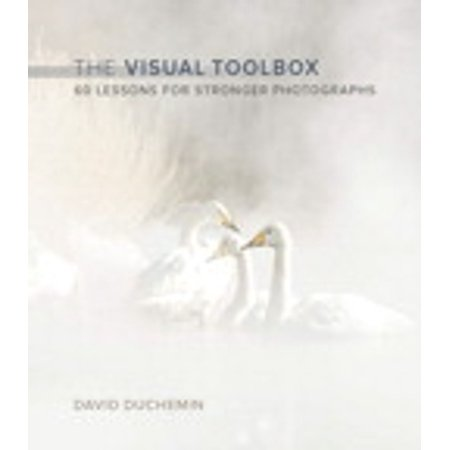 The Visual Toolbox - eBook (Visual Tools)