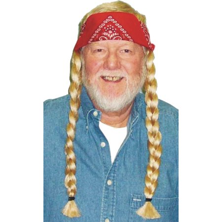 Morris Costumes Mens Hippie Wig Adult Halloween Accessory (Costume Mens Wigs)